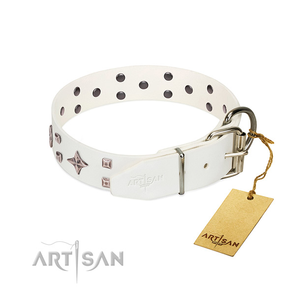 Stunning full grain genuine leather collar for your pet stylish walks
