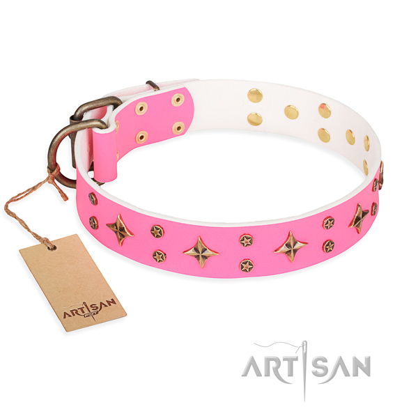 Handy use dog collar of durable full grain leather with studs
