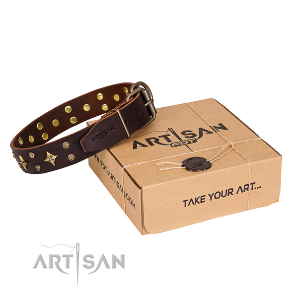Handy use dog collar of best quality full grain natural leather with embellishments