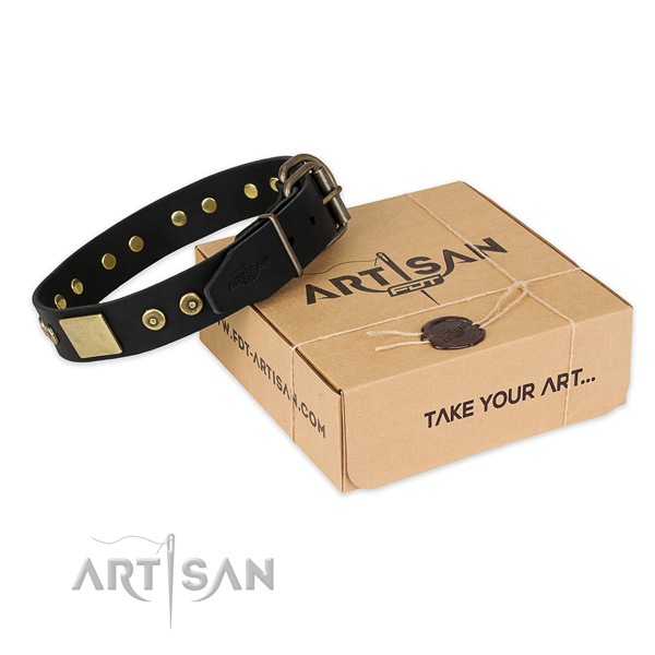 Reliable fittings on natural genuine leather dog collar for daily walking