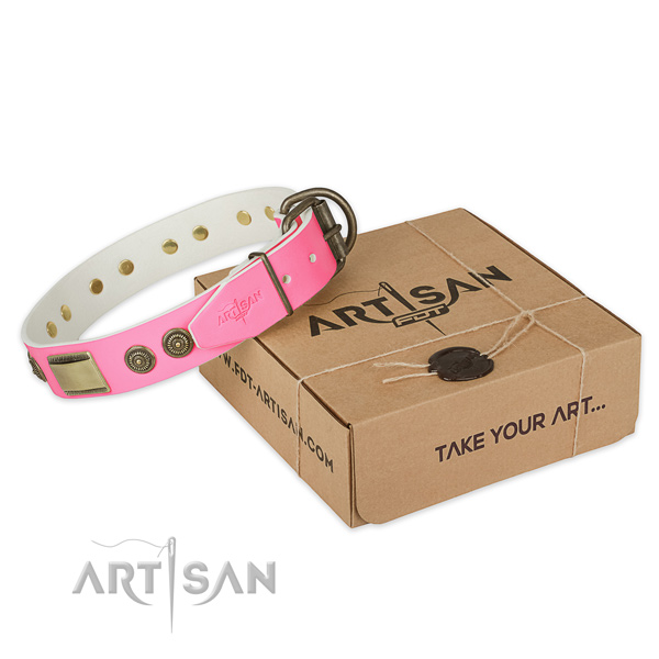 Strong adornments on dog collar for easy wearing