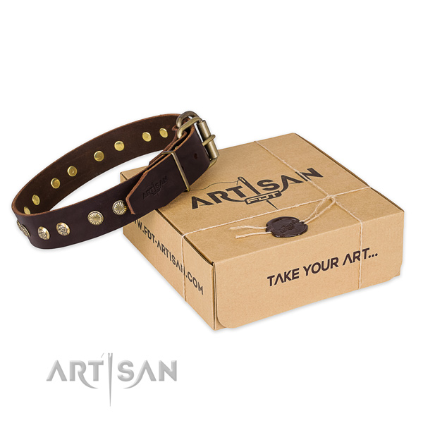 Rust-proof D-ring on full grain leather collar for your handsome pet