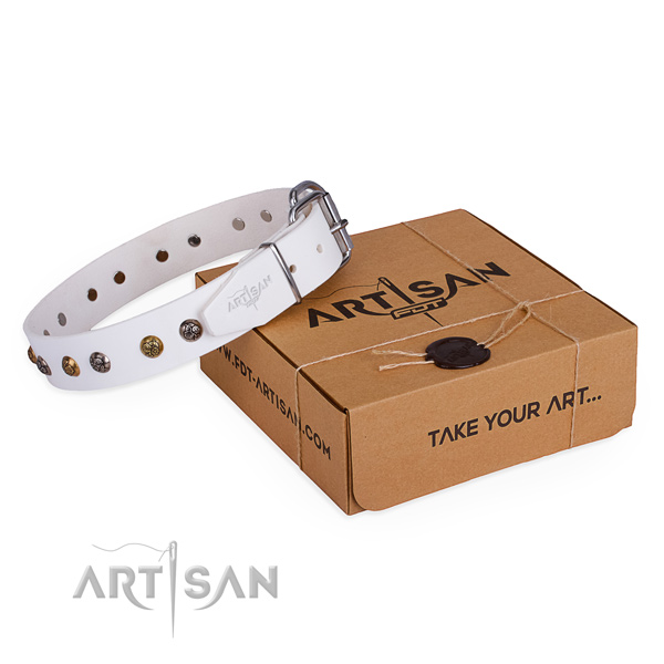 Everyday use dog collar with Stylish design strong embellishments