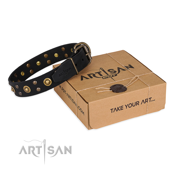Strong fittings on full grain natural leather collar for your lovely pet