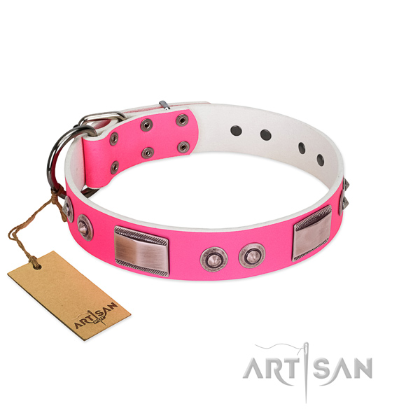 Awesome dog collar of full grain leather with embellishments