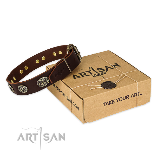 Corrosion resistant buckle on full grain genuine leather collar for your lovely four-legged friend