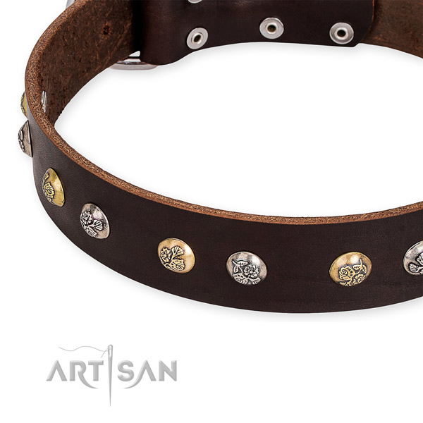 Leather dog collar with remarkable rust-proof decorations