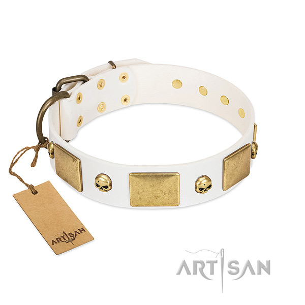 Top notch leather collar crafted for your pet