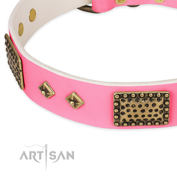 Full grain leather dog collar with studs for everyday walking