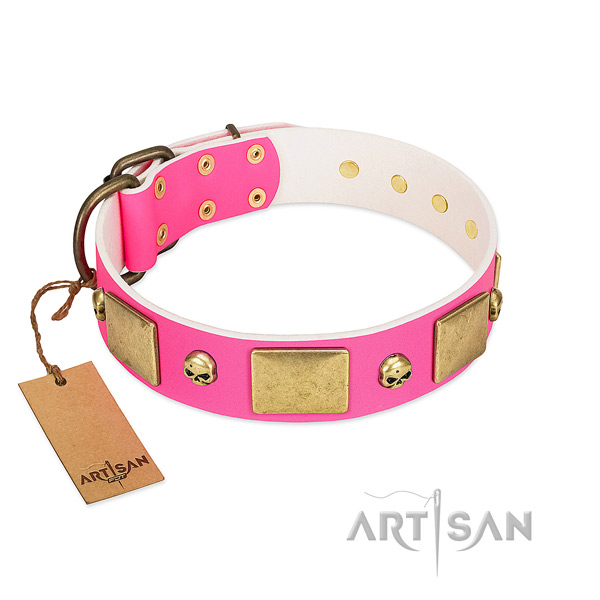 Soft full grain leather collar with rust resistant decorations for your canine