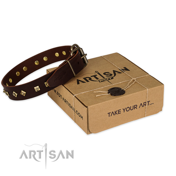 Corrosion proof hardware on full grain leather dog collar for daily walking