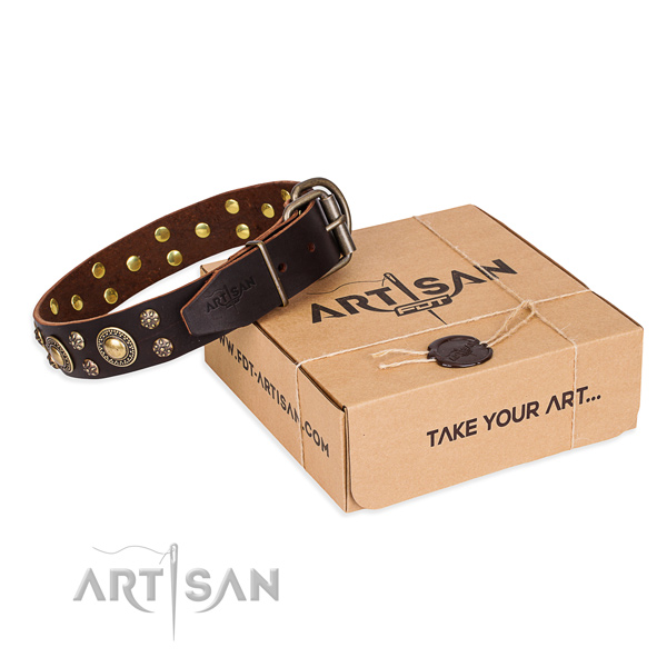 Easy wearing dog collar of top quality full grain genuine leather with embellishments
