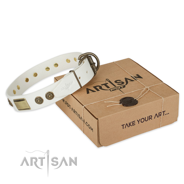 Strong buckle on full grain natural leather dog collar for easy wearing