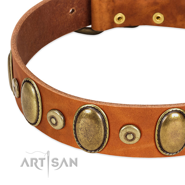 Top notch genuine leather collar made for your canine