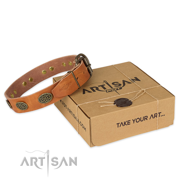 Reliable buckle on natural genuine leather collar for your handsome pet
