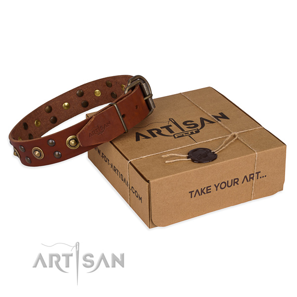 Corrosion proof hardware on full grain natural leather collar for your stylish four-legged friend
