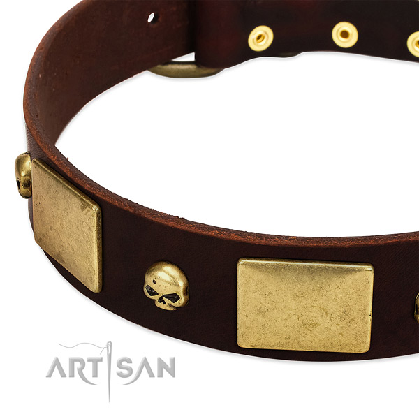 Best quality full grain genuine leather collar with rust-proof adornments for your dog
