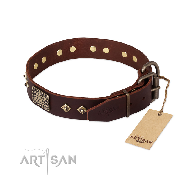 Leather dog collar with durable fittings and adornments
