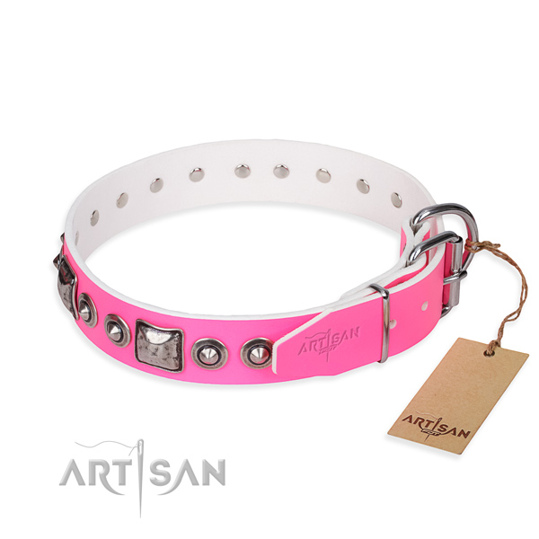 Quality leather dog collar handcrafted for everyday walking
