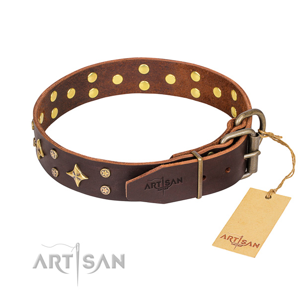 Comfy wearing embellished dog collar of durable leather