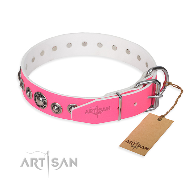 Leather dog collar made of quality material with durable studs