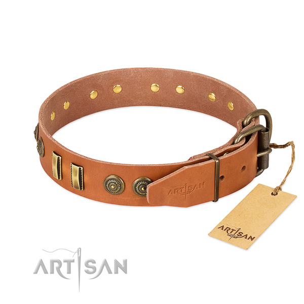 Strong adornments on full grain leather dog collar for your dog