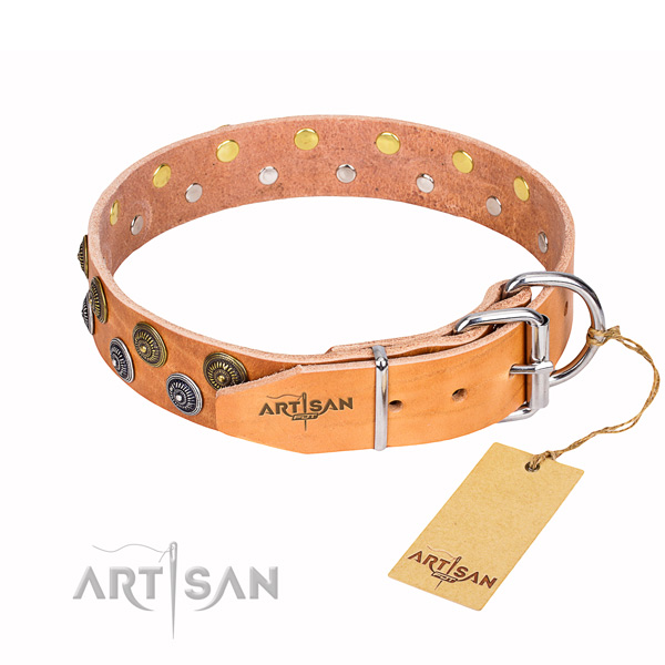 Handy use studded dog collar of finest quality full grain natural leather