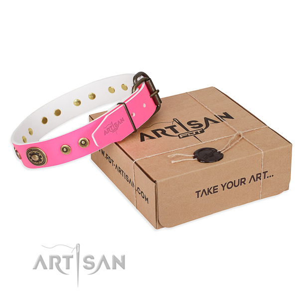 Leather dog collar made of high quality material with corrosion resistant fittings
