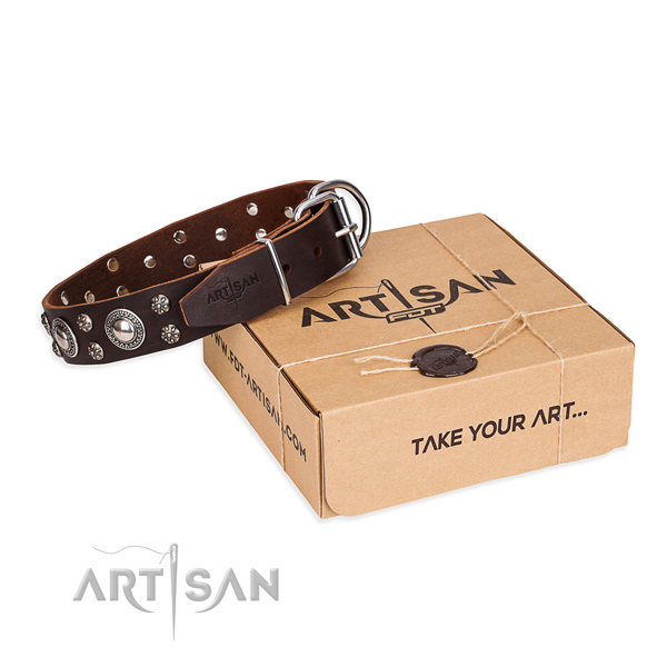 Stylish walking dog collar of fine quality full grain natural leather with studs