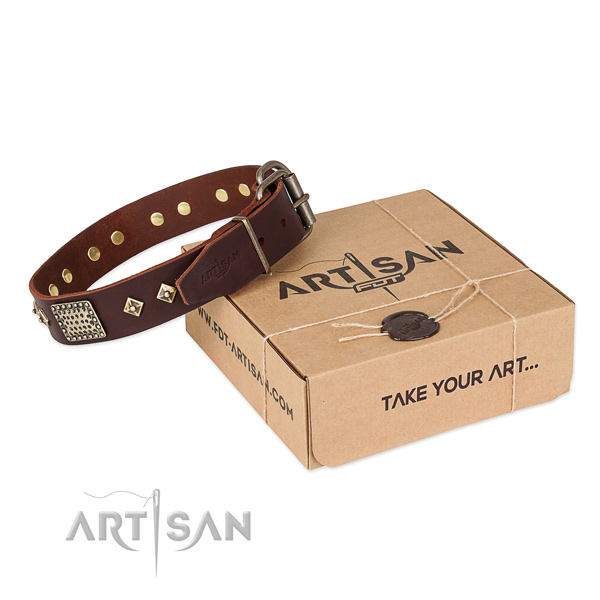 Exquisite leather collar for your lovely four-legged friend