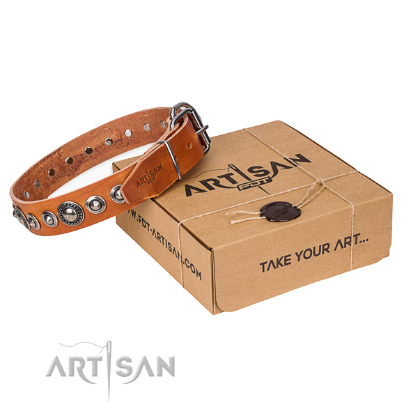 Full grain natural leather dog collar made of soft material with strong buckle