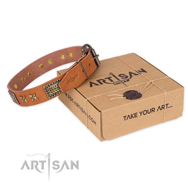 Durable buckle on leather collar for your attractive dog