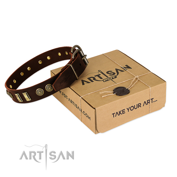 Rust-proof decorations on leather dog collar for your four-legged friend