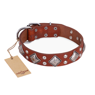 """Magic Squares"" FDT Artisan Tan Leather Amstaff Collar with Silver-like Decor"