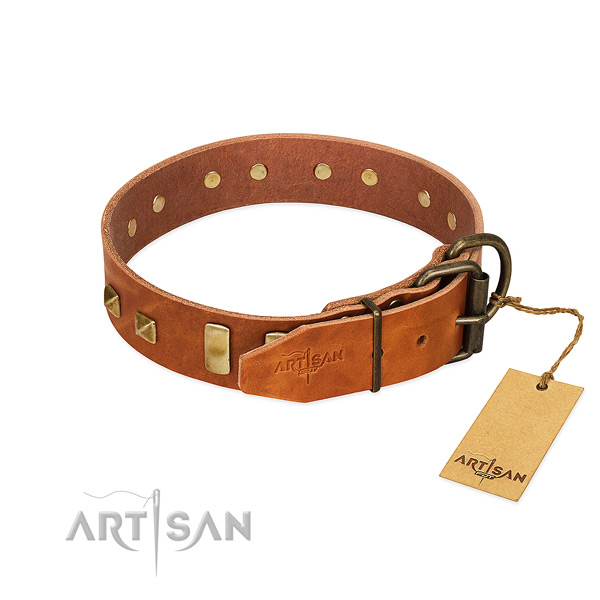 Reliable natural leather dog collar with rust resistant hardware