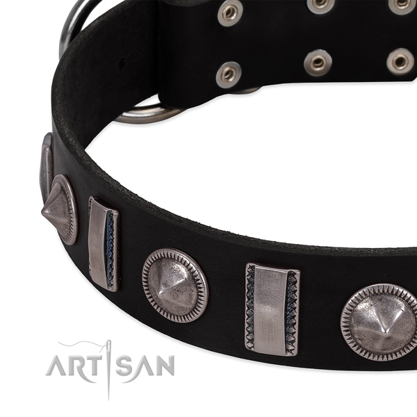 Unique studded full grain genuine leather dog collar for walking