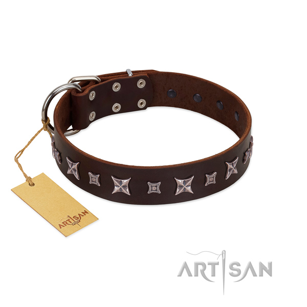 Quality full grain leather dog collar with unique decorations