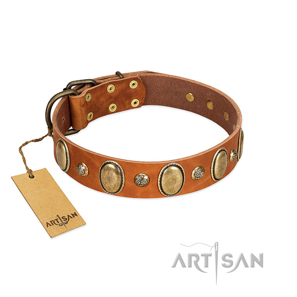 Full grain genuine leather dog collar of top notch material with incredible embellishments