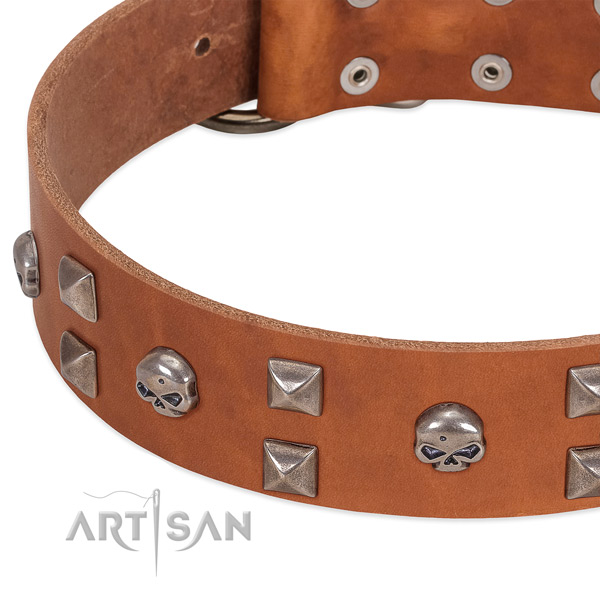 Durable full grain leather dog collar handmade for your canine