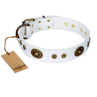 """Magnetic Appeal"" FDT Artisan White Leather Amstaff Collar with Old Bronze Look Decorations"