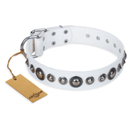 """Ice Age"" FDT Artisan White Studded Leather Amstaff Collar"