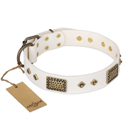 """Snow-covered Gold"" FDT Artisan White Leather Amstaff Collar"