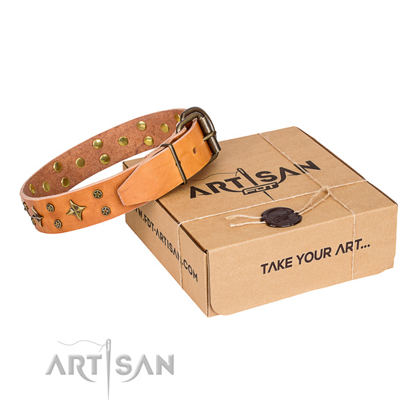 Daily use dog collar of fine quality full grain leather with decorations