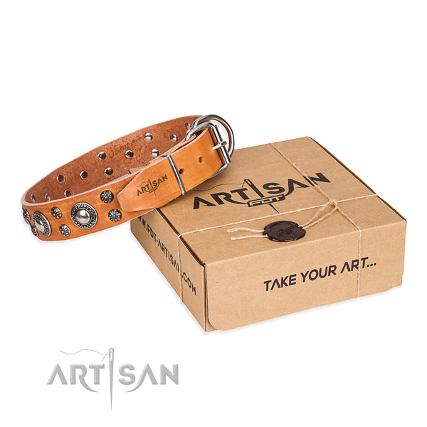 Comfortable wearing dog collar of strong full grain leather with decorations