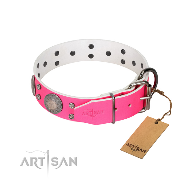 Reliable full grain leather dog collar with studs for your beautiful pet