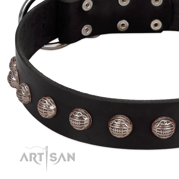 Full grain genuine leather collar with designer adornments for your dog