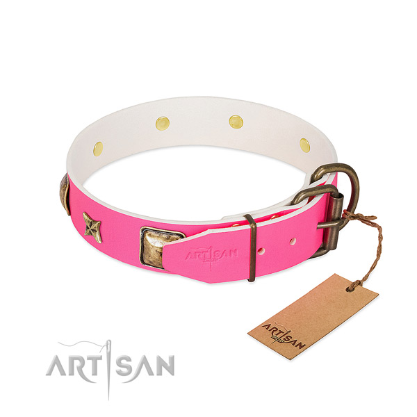 Rust-proof fittings on genuine leather collar for stylish walking your dog