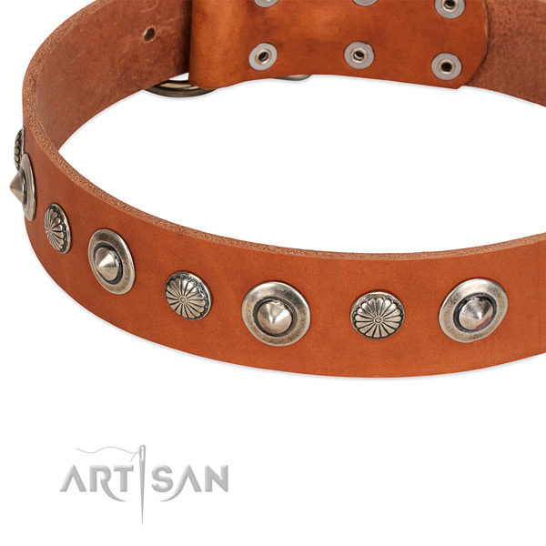 Full grain leather collar with rust resistant D-ring for your impressive four-legged friend