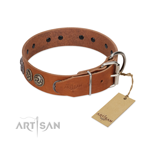 Corrosion proof D-ring on handmade full grain leather dog collar
