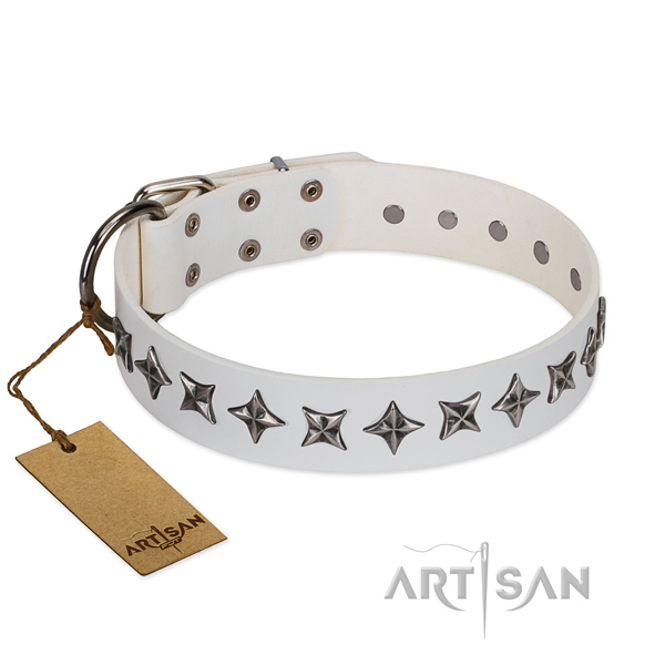 Everyday use dog collar of high quality full grain natural leather with studs